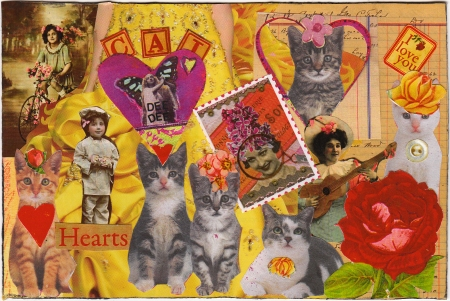 Cat Hearts I Love You Postcard