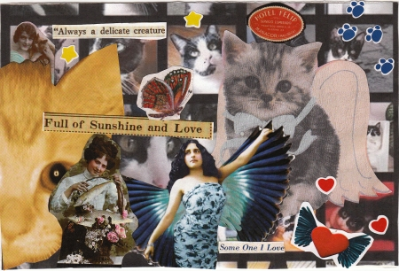 Full of Sunshine & Love Cat Postcard